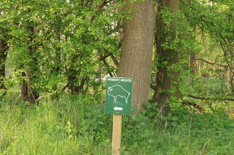 Infosign Bison Trail. Photo: Leo Linnartz